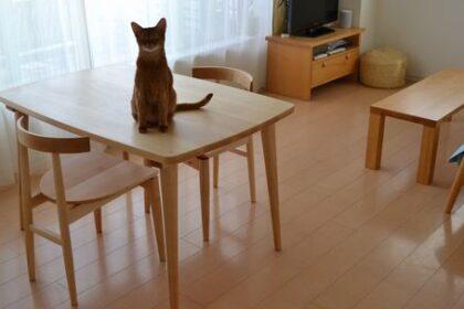 テレワークテーブル